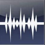 wavepad audio editor logo - Softwarebottle